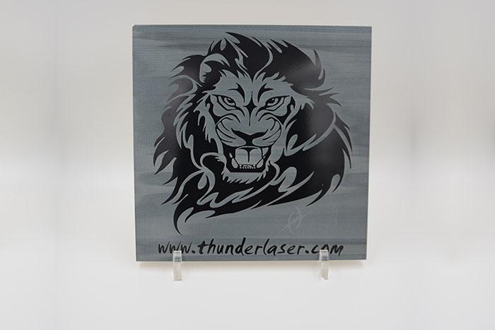 lion Ceramic laser engraver