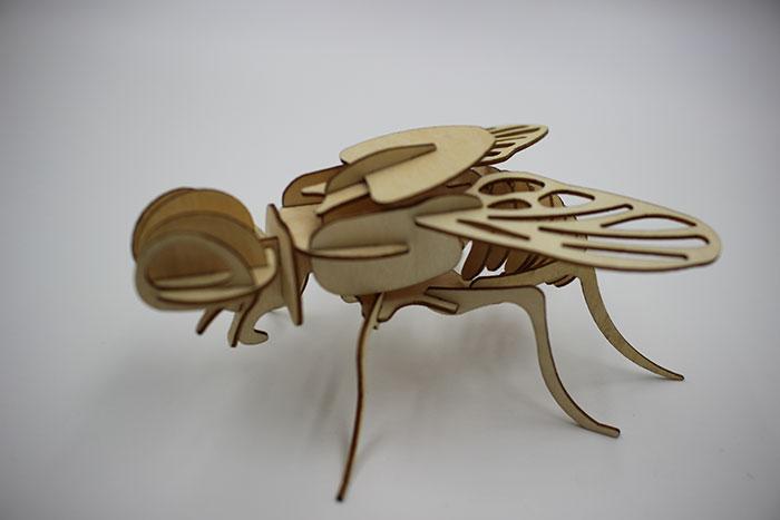 fly Model laser cutter