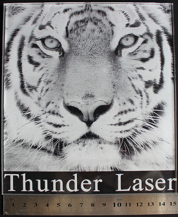 tiger photo laser engraver